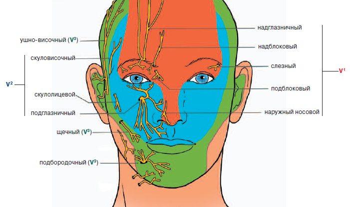 Невралгия тройничного нерва при рассеянном склерозе