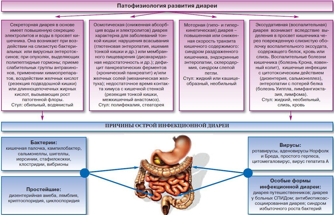 Острые кишечные диарейные инфекции