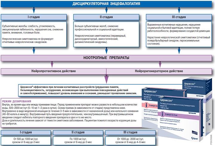 Протокол лечение дисциркуляторного энцефалита